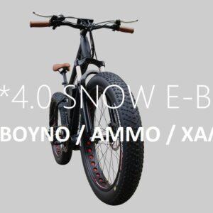 """Ηλεκτρικό ποδήλατο 26"""" FAT TIRE FR26A"""